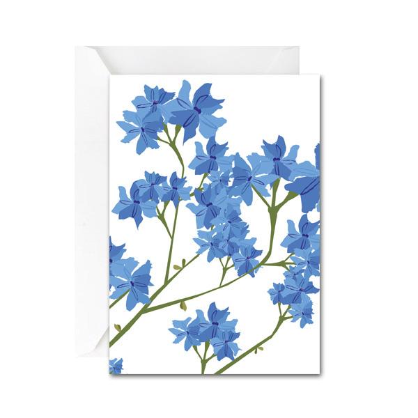 Leschenaultia Mini Gift Card
