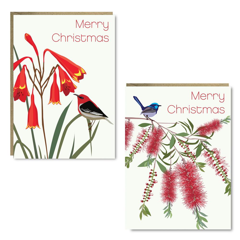 Christmas Wren Honeyeater 8 Card Pack