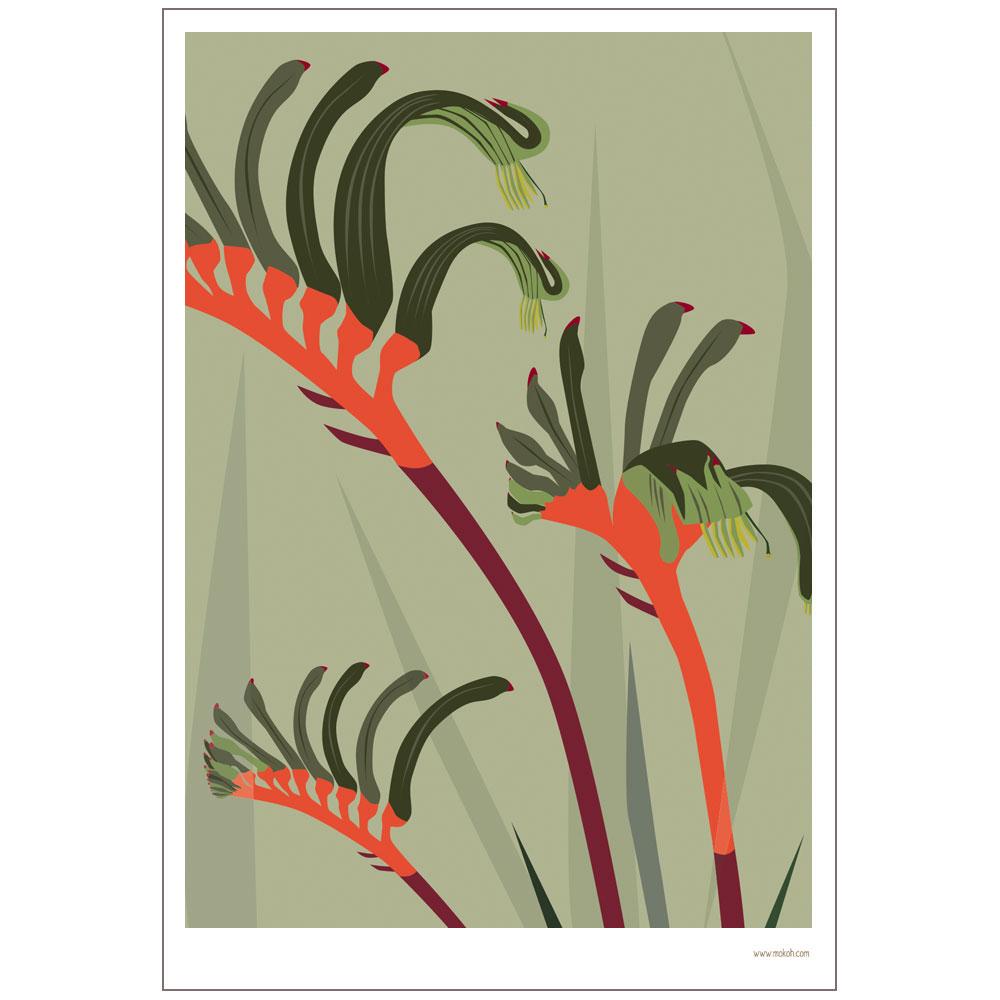 Botanicals Kangaroo Paw Print